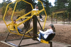 1-Ferris-wheel